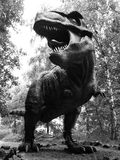Tyranosaurus Rex Stock Photos