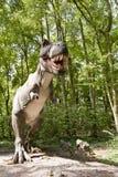 Tyranozaur Stock Images