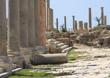 Tyre Archeological Site, Lebanon Royalty Free Stock Photography