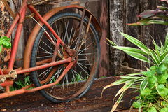Tyre blowout old wood background Stock Image