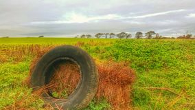 Tyre hay bake field isle of wight Royalty Free Stock Images