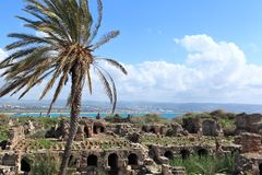 Tyre, Lebanon. The ancient roman ruins at Tyre, Lebanon Stock Photo