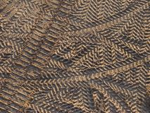 Tyre prints Royalty Free Stock Images