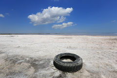 Tyre on salt seashore Royalty Free Stock Images
