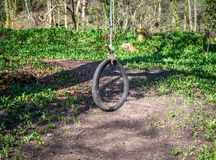 Tyre Swing Stock Photo