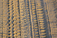 Tyre or tire track in mud. Royalty Free Stock Images