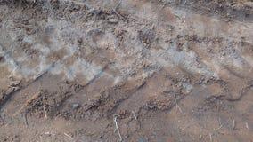 Vehicles Tracks in Mud way stock image