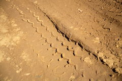 Tyre Tracks Royalty Free Stock Image