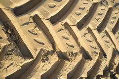 Tyre tracks Stock Images