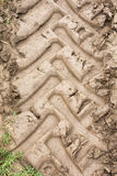 Tyre tracks in the mud Royalty Free Stock Photo