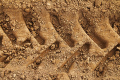 Tyre tracks in mud Stock Image