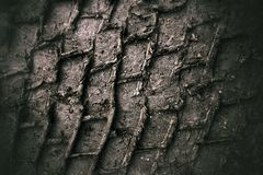 Tyre tracks in mud Royalty Free Stock Images
