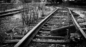 Tyre on Tracks Royalty Free Stock Image