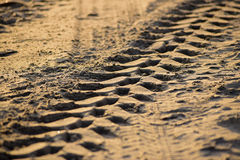 Tyre tracks in sand Royalty Free Stock Photography