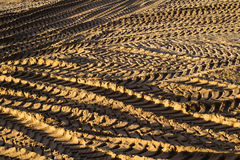 Tyre tracks in sand Royalty Free Stock Photo