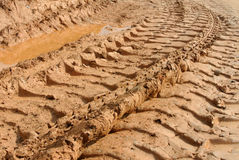 Tyre tracks or trail on soft soil. Stock Photo