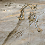 Tyre tracks in wet concrete Stock Photos