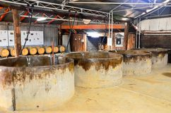 Tyrell wytwórnia win, Australia obraz stock