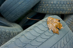 Tyres royalty free stock photo