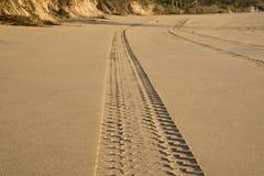 Tyretracks auf sandigem Strand Stockbild
