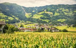 Tyrol nature, area Fugen, Austria Royalty Free Stock Photography