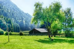 Tyrol nature, area Fugen, Austria Royalty Free Stock Images