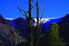 tyrolean冰川 库存图片