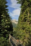 Tyrolean Alps. Fence in the Tyrolean Alps Royalty Free Stock Photography