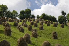 Tyrolean hay sheaves in Pusteria valley. Handmade sheaves in southern Tyrol,Italy Royalty Free Stock Photography
