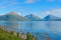Tysfjorden in den Lofoten-Inseln lizenzfreie stockfotos