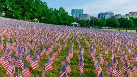 Tysiące USA flagi zasadzać w Boston Common upamiętniać spadać żołnierzy w wojnach, podczas Memorial Day weekendu obraz stock