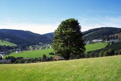tysk natur Arkivbilder