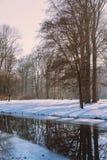 Tysk skog med snö och träd med stilla atmosfär Munich, Arkivfoton