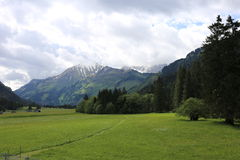Tyska fjällängar under sommaren Arkivfoton