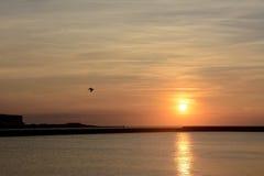 Tyskland Schleswig-Holstein, Heligoland, Nordsjönkust på solnedgången Arkivbilder