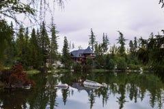 Tyst bergsjö som omges av skogen royaltyfri bild