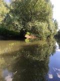 tyst Donau Royaltyfria Bilder