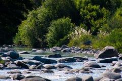 Tyst flod Royaltyfri Bild