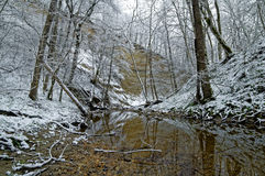 Tyst flod i dalen i vinterskogen Arkivbild