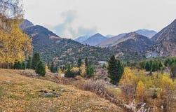 Tyst höst i skogbergen royaltyfri fotografi