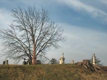 Tyst kyrkogård med trädstubben Arkivbild