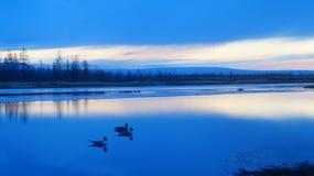Tyst Lake Arkivbild