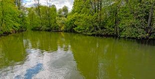 Tyst skogflod Royaltyfri Fotografi