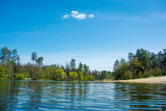 Tyst skogsjö Royaltyfria Foton