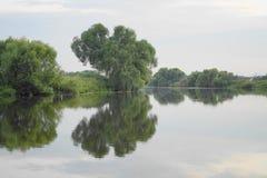 Tyst släta yttersida av vatten i floden Royaltyfri Foto