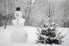 tyst snowman arkivbilder