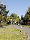 Tyst trädgård med härliga färger arkivbilder