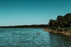 tyst vatten Arkivbild