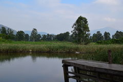 tyst vatten Arkivfoto