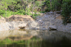 Tyst yttersida av sjön Royaltyfri Foto